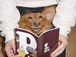 ご本を読むと目がまわる