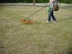 突然芝生を走り出すインディ