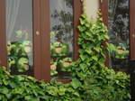 窓からのぞく多数の緑色の人形たち! (クリックで拡大してみてね)
