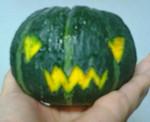 お化けかぼちゃのJackのつもり 北海道産 坊ちゃんカボチャ